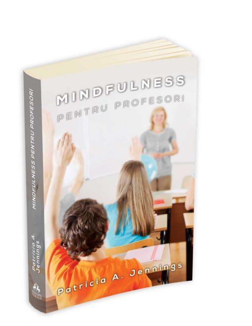mindfulness pentru profesori