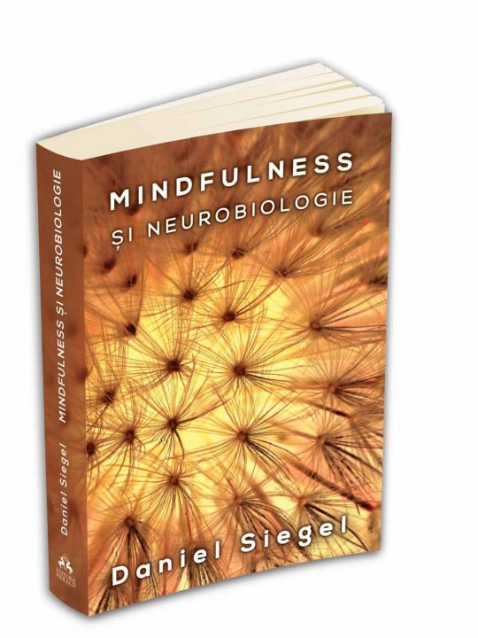 mindfulness si neurobiologie calea catre cultivarea