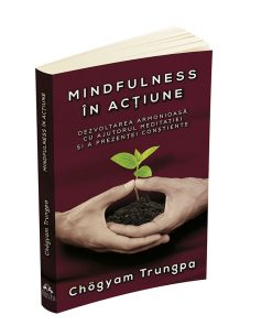 trungpa mindfulness in actiune