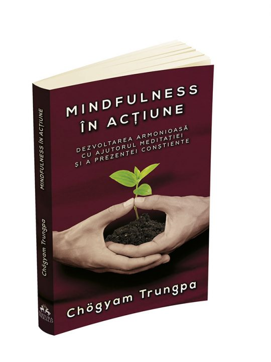 trungpa mindfulness in actiune