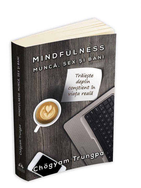 mindfulness munca sex bani