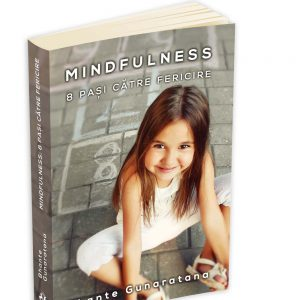 mindfulness 8Pasi persp